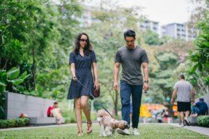 Kærestepar går tur med deres hunde